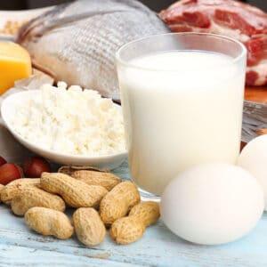 Protein, das Alter und unser Immunsystem