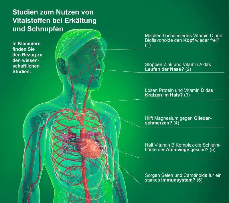 Studien zum Nutzen von Vitalstoffen bei Erkältung und Schnupfen