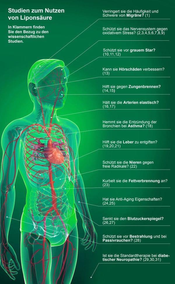 Studien zum Nutzen von Liponsäure