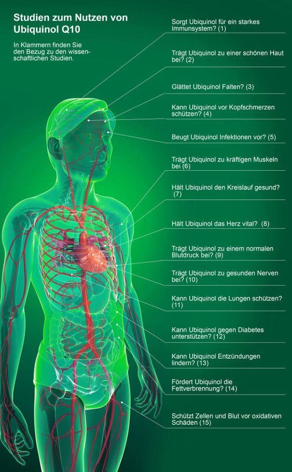 Studien zum Nutzen von Ubiquinol Q10