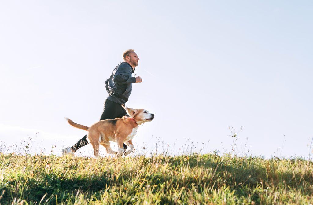 Jogging mit Hund